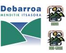 Proyecto Debarroa